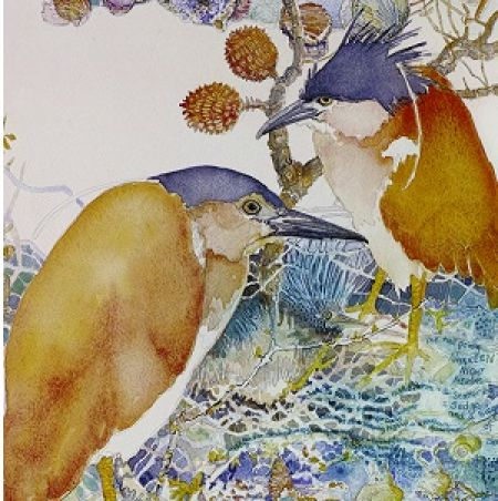 Sedge of Herons